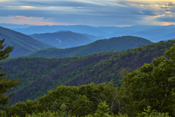 View from Brown Mountain Overlook, Shenandoah National Park, Virginia